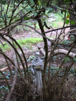 Gothic garden Saint Francis bird feeder statue placed within the vines