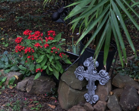Pentas and Gothic cross
