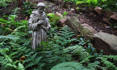 Saint Francis statue among the ferns in the Gothic Garden and stones with moss growing on them are all beautiful touches to create an ancient look to your garden
