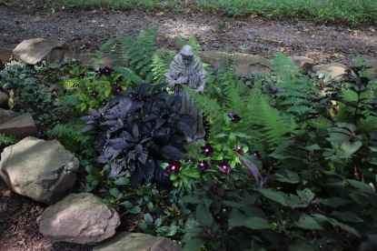 Ferns, Vinca, Ornamental pepper, and chocolate joe pye weed