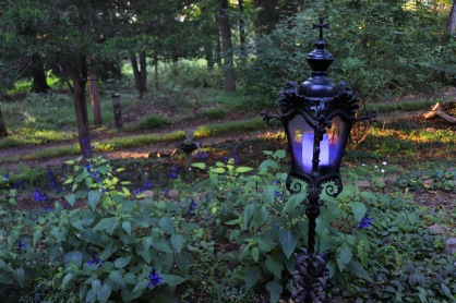 Patch of Black and Bloom Salvia and a refurbished vintage Gothic light post setting a beautiful scene of deep purple blue, greens, and black