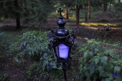 The Gothic Garden